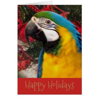 Cartão da época natalícia do papagaio do Macaw