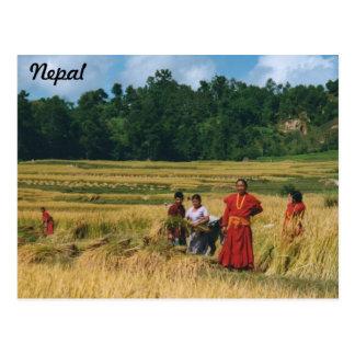 Cartão da família de Nepal