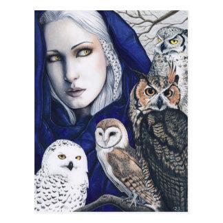 Cartão da fantasia do Shaman das corujas da