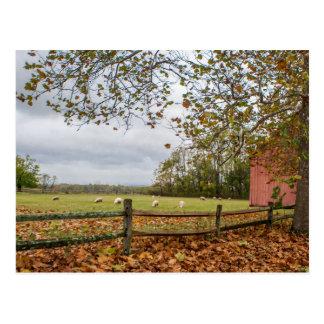 Cartão da fazenda da queda de Connecticut