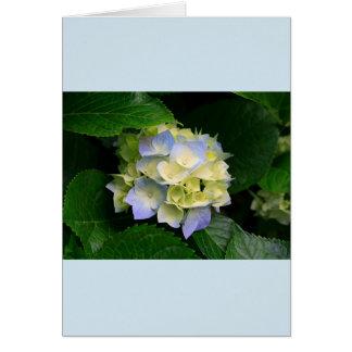 Cartão da flor