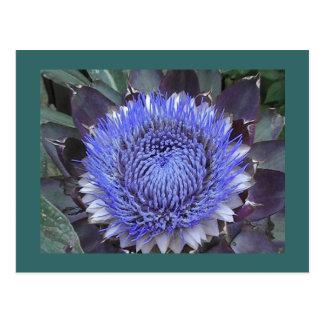 Cartão da flor da alcachofra