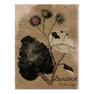 Cartão da flor do Burdock do estilo do vintage