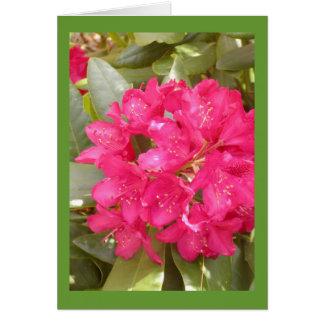 Cartão da flor do rododendro