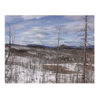 Cartão da floresta nacional de Pike