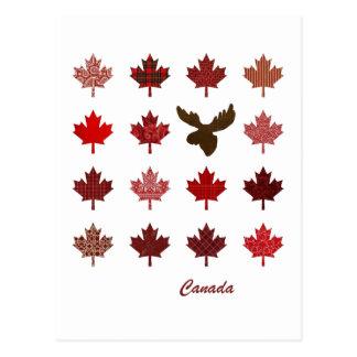 Cartão da folha de bordo e dos alces de Canadá