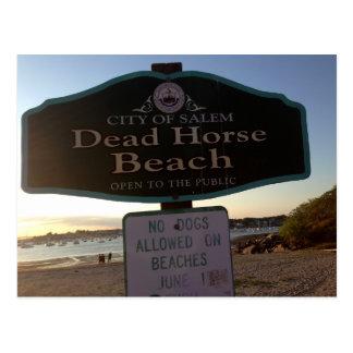Cartão da foto das MÃES de Salem do sinal da praia