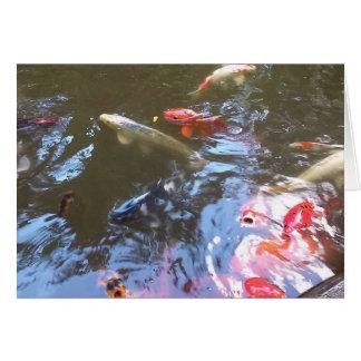 Cartão da fotografia da lagoa de Koi
