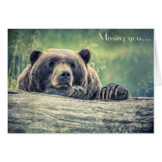 Cartão da fotografia do urso: Faltando o ou alguma