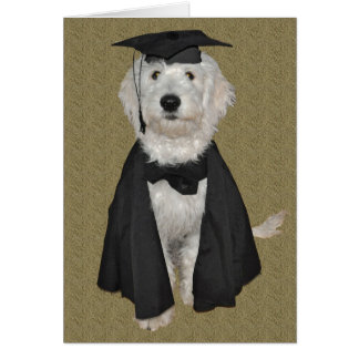Cartão da graduação de Goldendoodle