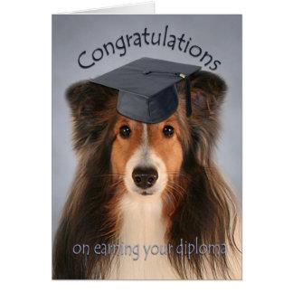 Cartão da graduação de Sheltie