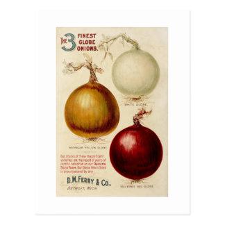 Cartão da ilustração da carta da cebola do vintage