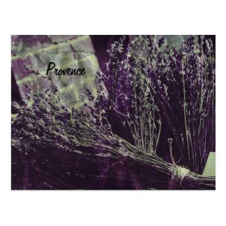 cartão da lavanda de provence