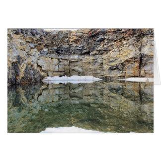 Cartão da natureza das reflexões 1 da parede da p