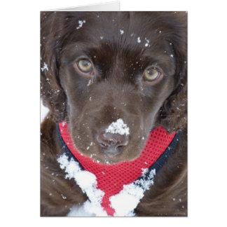 Cartão da neve do filhote de cachorro do Natal