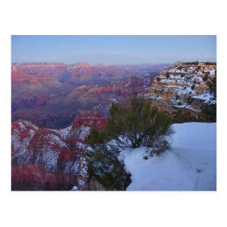Cartão da neve do Grand Canyon