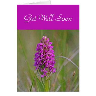 Cartão da orquídea