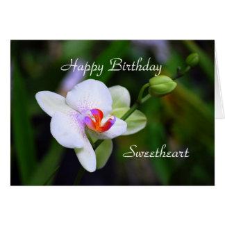 Cartão da orquídea do Phalaenopsis do querido do