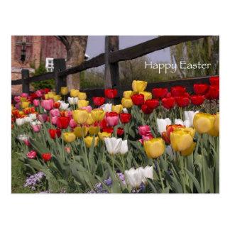 Cartão da páscoa do jardim da tulipa cartoes postais
