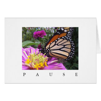 Cartão da pausa: Monarca no Zinnia cor-de-rosa