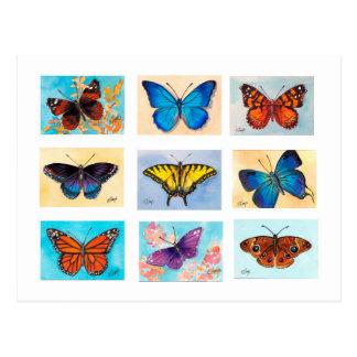 Cartão da pechincha da borboleta