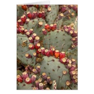 Cartão da pera espinhosa