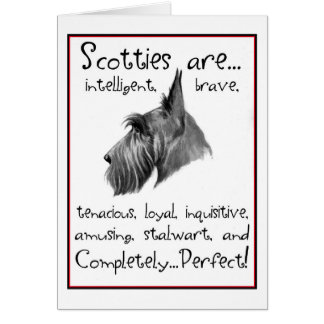 Cartão da perfeição do Scottie