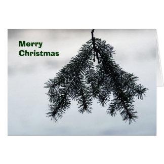 cartão da Pinho-em-neve