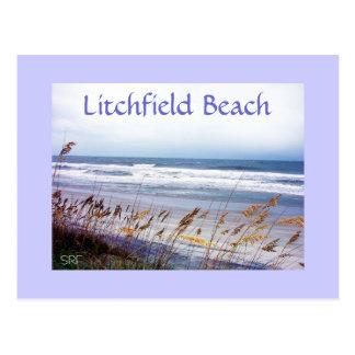 CARTÃO da PRAIA, praia de Litchfield
