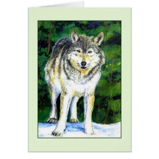 Cartão da região selvagem do lobo
