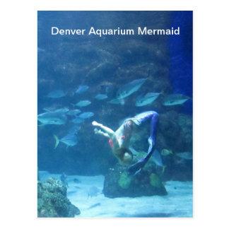 Cartão da sereia do aquário de Denver
