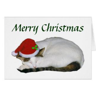 Cartão da sesta do gato do Natal