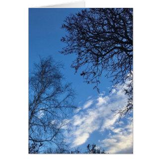 Cartão da silhueta da árvore do céu azul das