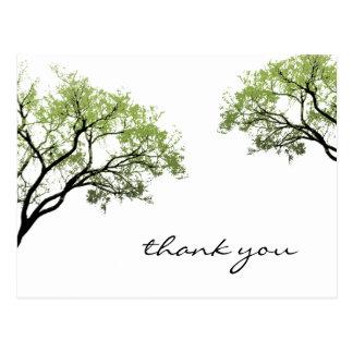 Cartão da silhueta das árvores do primavera
