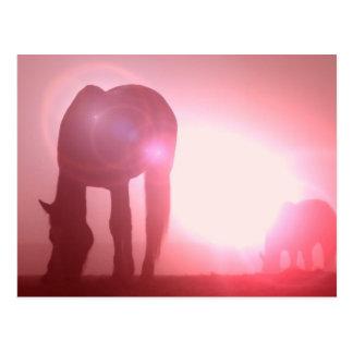 Cartão da silhueta do cavalo