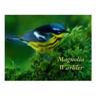Cartão da toutinegra da magnólia
