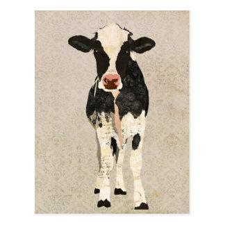 Cartão da vaca do ônix & do marfim cartao postal