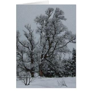 Cartão da véspera do inverno