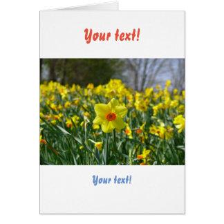 Cartão Daffodils amarelos alaranjado 01.0.2.T