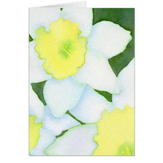 Cartão Daffodils Notecard
