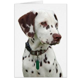 Cartão Dalmatian do filhote de cachorro