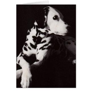 Cartão Dalmatian em preto e branco