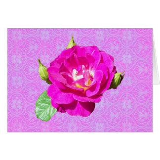 Cartão Damasco cor-de-rosa da violeta