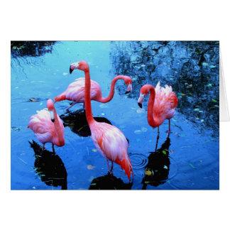 Cartão Dança dos flamingos