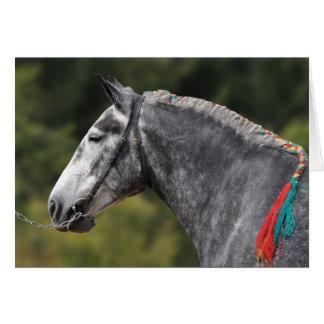 Cartão Dapple o aniversário cinzento do cavalo de