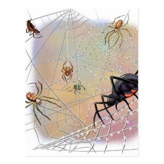 Cartão das aranhas