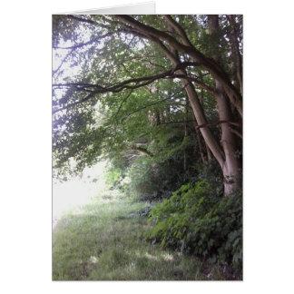 Cartão das árvores da borda da floresta
