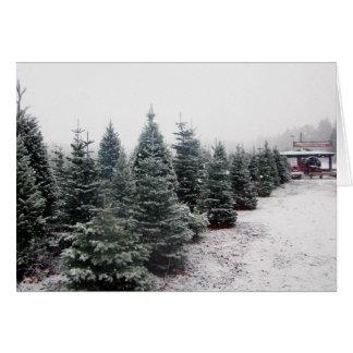Cartão das árvores de Natal