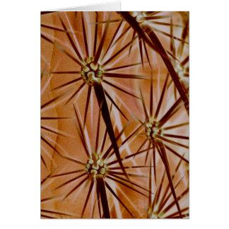 Cartão das espinhas do cacto