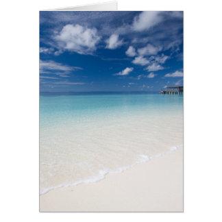 Cartão das férias